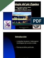 Farmacologia Clinica Del Pie Equino.ppt