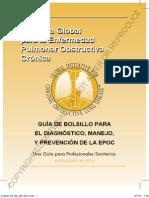 GOLD Pocket Spanish2014