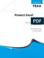 Proiect Excel