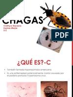 Chagas enfermedad pp
