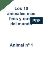 Los 10 Animales Mas Feos y Raros