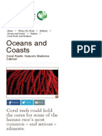 Coral Reefs and Medicine _ the Nature Conservancy
