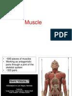 6 Cilia_ Flagella_ Amoeboid Movement_skeletal Muscle Nov 2014 (1)