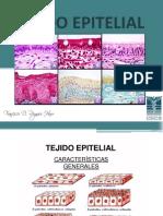 2. Tejido Epitelial (1)