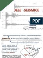 Undele Seismice