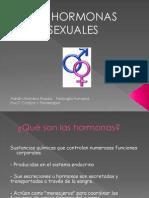 Las Hormonas Sexuales. Adrián Molinero