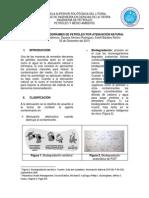 Remediación de Derrames de Petróleo(Atenuación y Bioremediación)