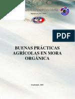 Buenas Practicas Mora Organic A
