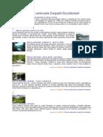 Parcuri Nationale Carpatii Occidentali