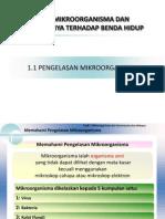 1 1pengelasanmikroorganisma 130518162538 Phpapp02