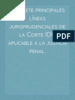 Las siete principales líneas jurisprudenciales de la Corte IDH aplicable a la justicia penal.