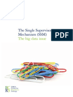 The Single Supervisory Mechanism (SSM) - The Big Data Issue (1)