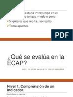 Qué Se Evalúa en La ECAP