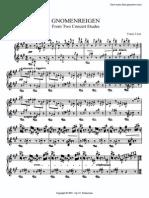 Liszt Etudes Gnomenreigen