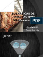 BPM en Camales