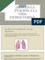 Síndrome de Dificultad Respiratoria Tipo 1 (SDR