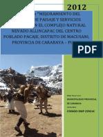 PERFIL ALLINCCAPAC APROBADO.pdf