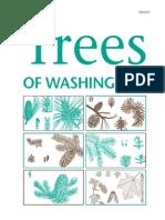 Trees of Washington