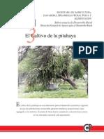 El Cultivo de La Pitahaya