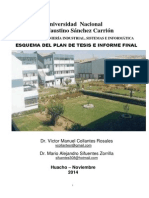 Dr. Collantes y Dr. Sifuentes Desarrollo_Esquema de Tesis_Asistida FIISI_2014