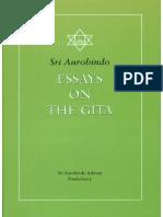 Essays on the Geeta