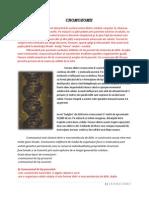 Cromozomii22