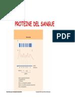 Proteine Sangue
