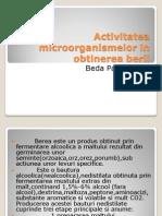 Activitatea Microorganismelor in Obtinerea Berii Beda Paul Andrei