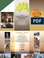 Majestic Safaris Flyer