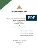 Estrutura Desafio Profissional - 2015 Técnicas de Negociação e Comportamento Organizacional (1)