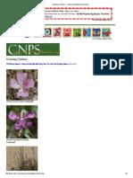 Clarkia.pdf