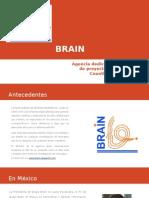 BRAIN - tecnicas cualitativas y cuantitativas.pptx