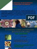 presentacion PARBSAC tecnicos indigenas