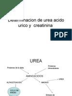 Determinacion de Urea