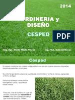 6) Cesped