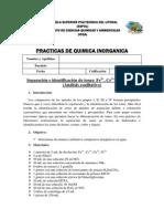 Practicas inorg+ínica_8.pdf