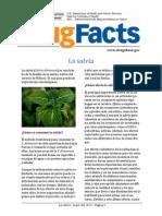 Drugfacts Salvia Spanish 052013 0