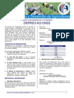 EDA_Hab_Neg_Depreciaciones_06_07.pdf