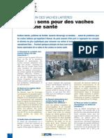 Alimentation Des Vaches Laitières - Du Bon Sens Pour Des Vaches en Bonne Santé