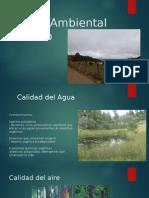Presentacion Estado Ambiental y Alternativa Agroquimicos