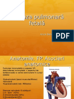 Stenoza pulmonară fetală