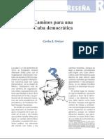 Caminos para una Cuba democrática (Bien Común 237)