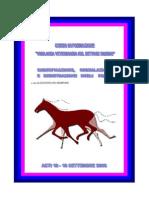 Identificazione e Segnalamento Cavalli
