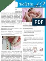 Boletin No.12 - Diciembre 2014