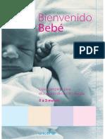 Bienvenido Bebe.- UNICEF 2005