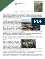 Dialnet-IgualesAnteLaLey-2348912.pdf