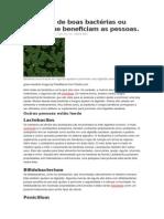 Exemplos de Boas Bactérias Ou Fungos Que Beneficiam as Pessoas