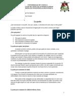 Poda (Informe)