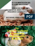 Cuidados y Alimentación Del Cobayo Como Mascotas