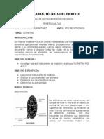 Instrumento de Medicion Altimetro